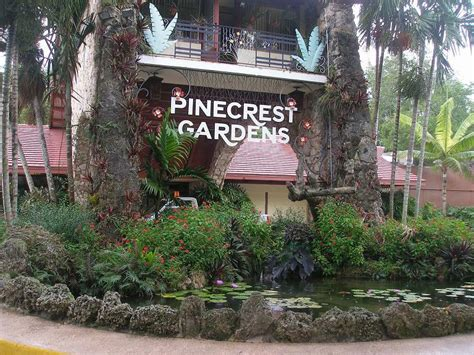 Pinecrest Gardens Miami by Taste Of Pinecrest 5 For Adults Gets One Free Child