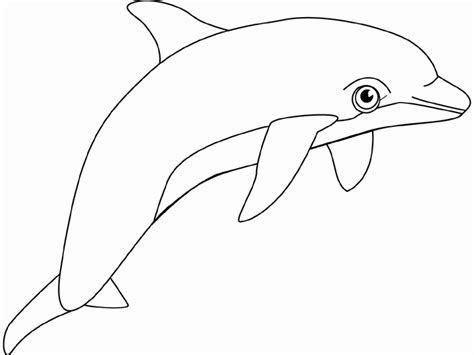 dolphin outline clipart best best dolphin outline 9723 clipartion com