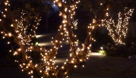 quality outdoor lights commercial quality outdoor string lights colour