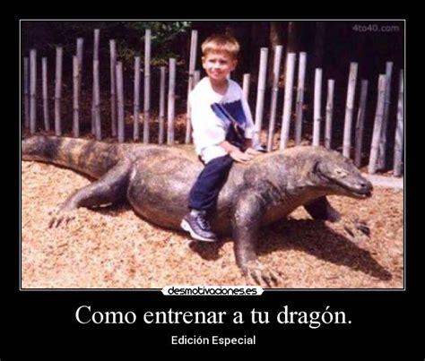 cmo entrenar a tus 846960547x pin como entrenar a tu dragon on