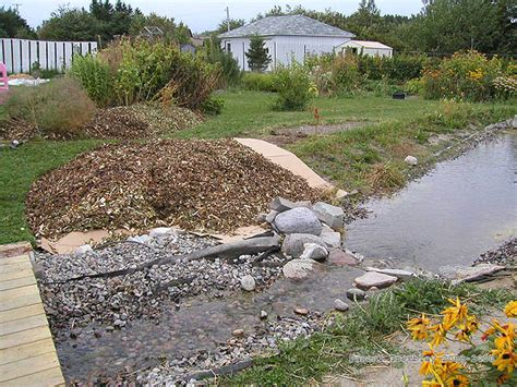 how to build a backyard stream cascading garden stream build a cascading stream on