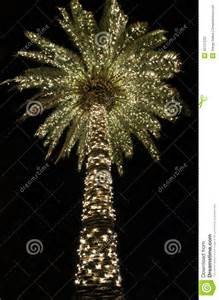 lights in sc palmetto stock photos image 35137233