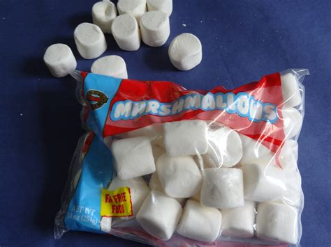 marshmallow in spanish science school instruction specialist