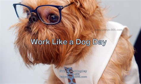 international puppy day 2017 work like a day august 5 2017 happy days 365