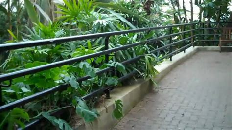 botanical gardens fort wayne in fort wayne botanical gardens