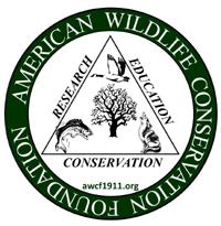 awcf american wildlife conservation foundation