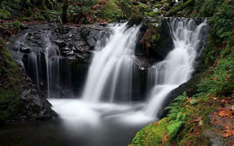 hd silver waterfall   mossy forest wallpaper
