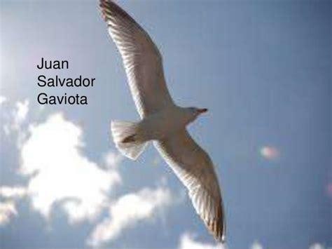 imagenes sensoriales de la novela juan salvador gaviota juan salvador gaviota un libro que no puede faltar en tu
