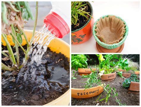 Gardening Hacks 11 Easy Gardening Hacks And Tips You Ll Wish You D Known