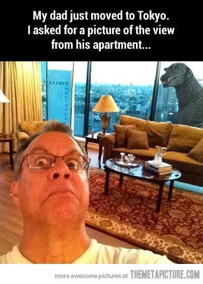 top   funniest fails  funny fails   memes