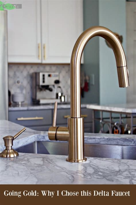 delta gold trinsic kitchen faucet chic  super functional  champagne bronze spinach tiger