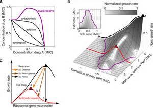 Nonoptimal nonoptimal microbial response to antibiotics underlies suppressive