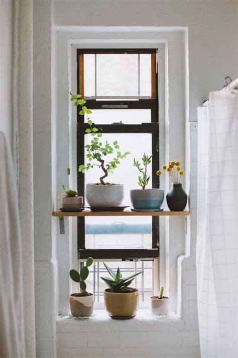 Plant Window Shelf by 25 Best Ideas About Window Shelves On Kitchen