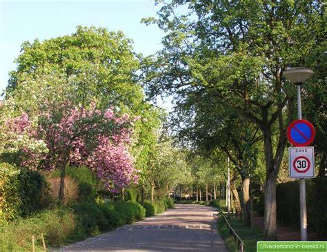 bloemen leusderweg amersfoort gt leusderweg luchtfoto s foto s nederland
