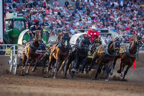 the greatest show on earth a royal international tattoo is calgary stede really the greatest show on earth
