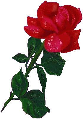 imagenes de amor animadas de flores rosas con brillo flores hermosas lindas hermosas