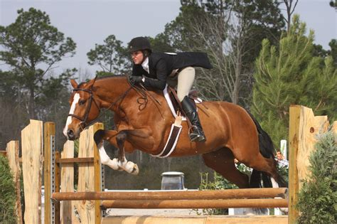 how to your to be a show your to be a brave and confident jumper