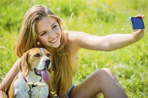 do dogs memory do dogs remember their previous owners cuteness