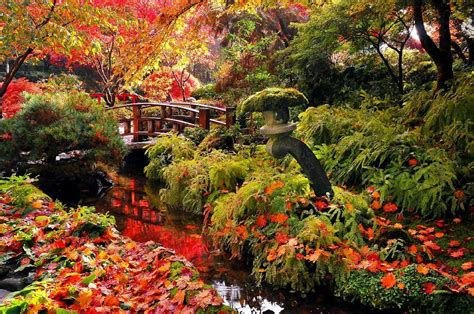 the garden of with the fall of the butchart gardens the garden notebook autumn 2015