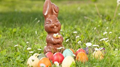 what to do during easter holidays sweet things to do easter weekend stuff co nz