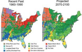 climate impacts on forests climate change impacts us epa