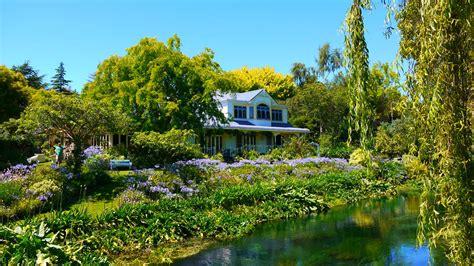 house flower garden garden hortensia house garden