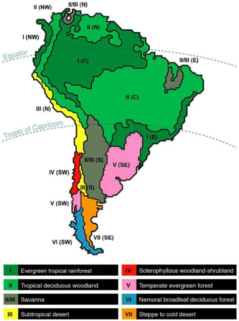 america map biome map of south american climatic dominions modified afte
