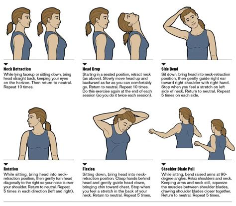 Desk Stretches For Neck And Shoulders by Neck Stretches Family Chiropractic