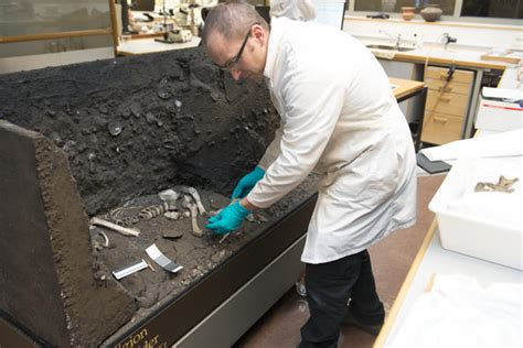 pattern testing archaeology dna analysis of the viste individual is underway