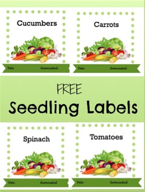printable garden labels free garden seedling labels garden tips and recipes