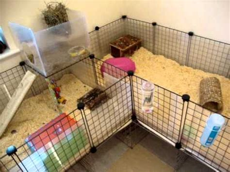 Rabbit Hutch Plans My New C Amp C Guinea Pig Cage Better Storage And More