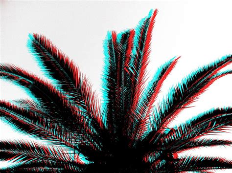 3d Effekt by 3d Effect Palm Tree Iphone 4 Edited With Pixlromatic