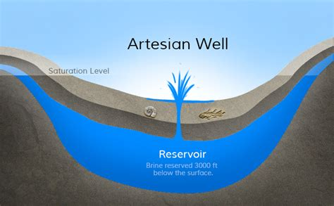 artesian well diagram artesian well salt