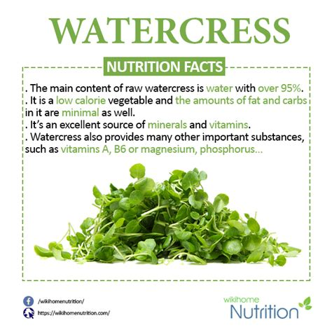 vegetables nutrition facts watercress nutrition facts and health benefits
