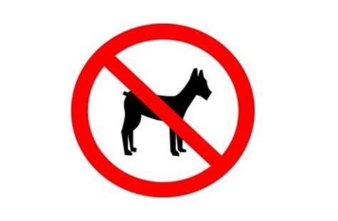 divieto d ingresso ai cani divieti ai cani nelle aree verdi tutti puniti per colpa