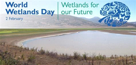 Celebrate World Wetlands Day 2 Feb With Free Wetlands Tours by World Wetlands Day 2018 2nd February Theme And Celebration