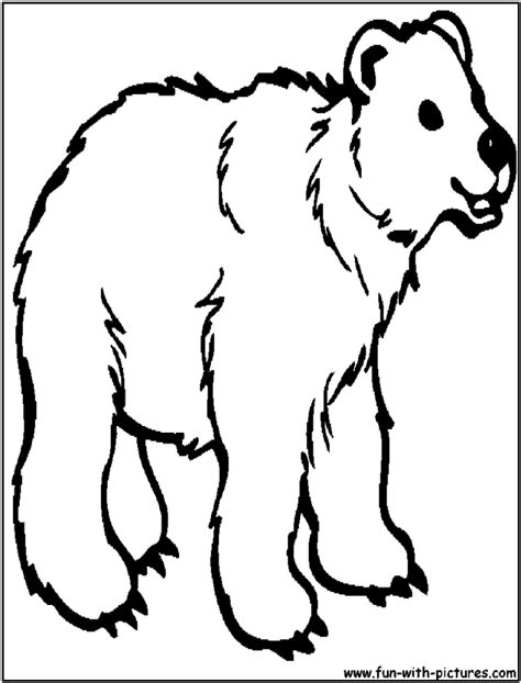 simple bear coloring page simple shapes coloring pages teddy bear 178660 bear