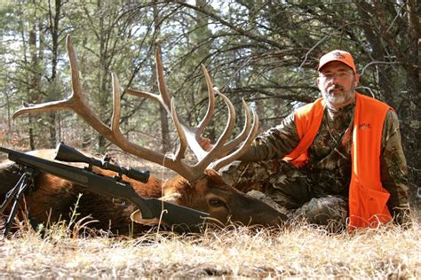 Buckmaster Sweepstakes - 2012 rifle elk full draw outfitters