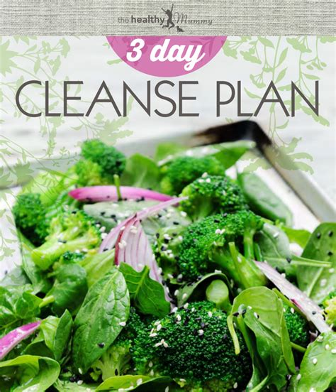 10 In 20 Detox Pdf by 3 Day Cleanse Plan Ebook Lose Baby Weight
