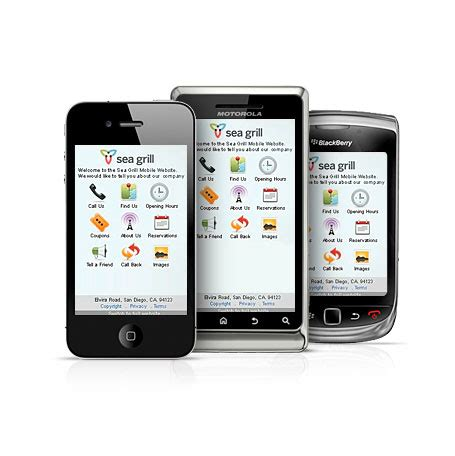 mobile website from network solutions it asset