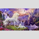 Images Of Baby Horses Running   1366 x 768 jpeg 335kB