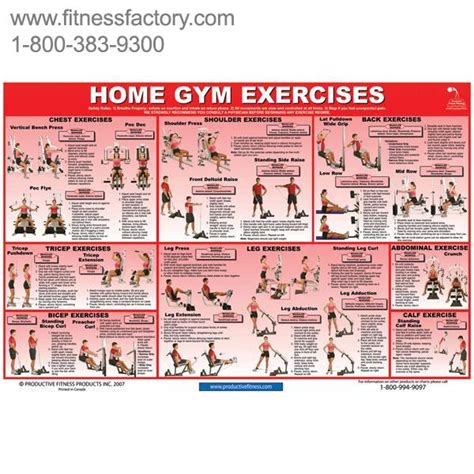 20 of the most common home exercises laminated 24 quot x 36 quot