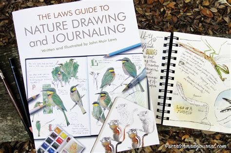 sketchbook guide the laws guide to nature drawing journaling book review