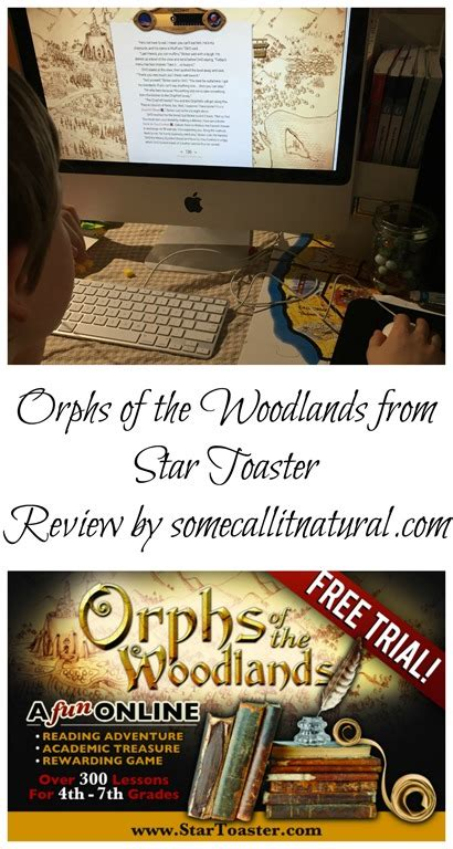 Book Review My So Called Normal By Erin Zammett by Toaster And The Orphs Of The Woodlands Review
