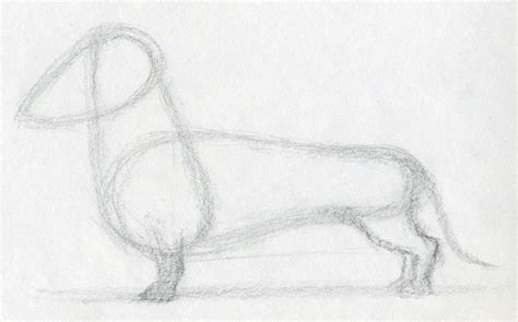 drawing of a puppy how to draw