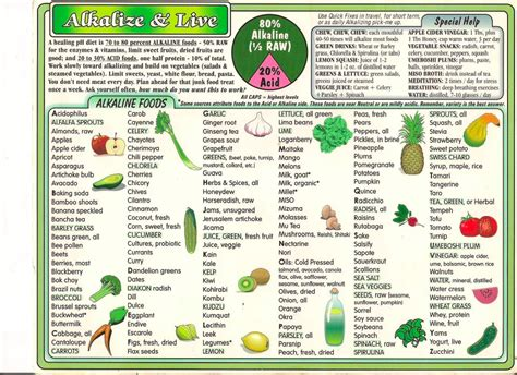 Pdf Master Plants Cookbook Healing Superfoods by Foods Lifetime Dietary Style Byzantineflowers