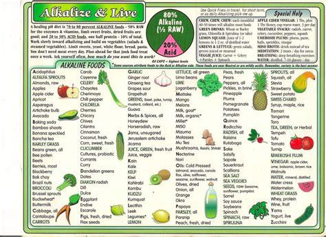 80 20 Food Detox Program Pdf by Foods Lifetime Dietary Style Byzantineflowers