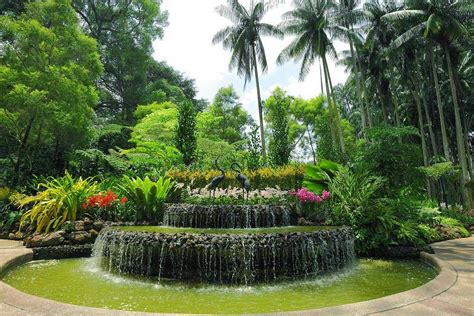 Botanical Gardens Singapore How To Explore Singapore With Cond 233 Nast Traveller India Singapore Special