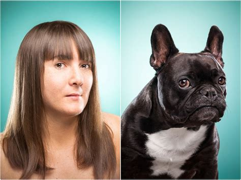 designboom dogs ines opifanti compares dog people to the expressions of