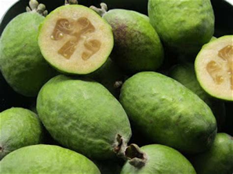 5 fruits that start with a fruit names that start with f fruit names a z with pictures